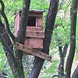 フクロウの巣箱